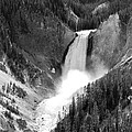 Grand Canyon of the Yellowstone  Poster by Christiane Schulze Art And Photography