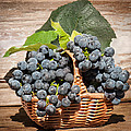 grapes and leaves in basket Print by Len Romanick