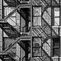 Great Escapes II Print by Rose  Fleming