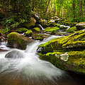 Great Smoky Mountains Gatlinburg TN Roaring Fork - Gift of Life Poster by Dave Allen