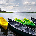 Green and yellow kayaks Print by Carlos Caetano
