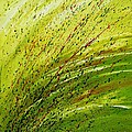 Green Landscape - Abstract Art  Poster by Ismeta Gruenwald