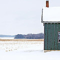 Green shed Print by Ty Helbach