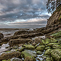Green Stone Shore Poster by Jon Glaser
