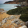 Guincho Cliffs Print by Carlos Caetano