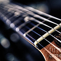 guitar strings Print by Stylianos Kleanthous