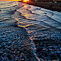 Gulf Sunset Print by Perry Webster