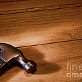 Hammer on Wood Print by Olivier Le Queinec