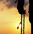 Hand holding Rudraksha beads Poster by Tim Gainey