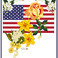 Happy Birthday America 2013 Print by Anne Norskog