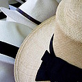 Hats Off To You Print by Lainie Wrightson