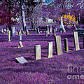 Haunted Cemetery Print by Alys Caviness-Gober
