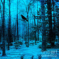 Haunting Dark Blue Surreal Woodlands With Crow  Print by Kathy Fornal
