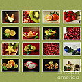 Healthy International Fruits Collection Poster by Inspired Nature Photography By Shelley Myke