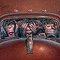 Hear No Evil See No Evil Speak No Evil Print by Mark Fredrickson