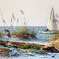 Heron and Sailboat Larger Sizes Poster by Michael Thomas