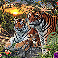 Hidden Images - Tigers Poster by Steve Read