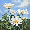 Hills and White Daisies Print by James Derieg