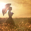 historical woman with parasol in a meadow at sunset Print by Lee Avison