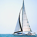 Hope Floats Sailboat from the book MY OCEAN Print by Artist and Photographer Laura Wrede