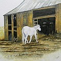 Horse and Barn Print by Bertie Edwards