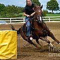 Horse and Rider in Barrel Race Print by Amy Cicconi