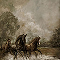 Horse Painting Escaping the Storm Poster by Gina Femrite
