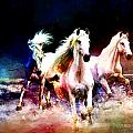 Horse paintings 002 Poster by Catf