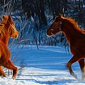 Horses at play Print by Tracy Winter