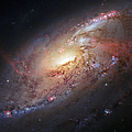 Hubble view of M 106 Print by Adam Romanowicz