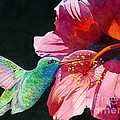 Hummingbird And Hibiscus Poster by Robert Hooper