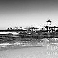 Huntington Beach Pier Black and White Picture Print by Paul Velgos