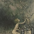 Illustration from A Wonder Book by Nathaniel Hawthorne Poster by Arthur Rackham