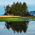 Island Reflection Print by Robert Bales
