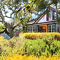 Jack London Countryside Cottage And Garden 5D24570 Poster by Wingsdomain Art and Photography
