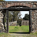 Jack London Ranch Winery Ruins 5D22128 Poster by Wingsdomain Art and Photography
