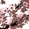 Japanese Blossom Poster by Sarah OToole