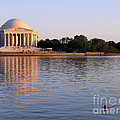 Jefferson Memorial Poster by Olivier Le Queinec