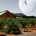 Journey Through The Valley of The Moon 5D24485 square Print by Wingsdomain Art and Photography