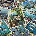 JQ's Fishing Collage Print by Jon Q Wright