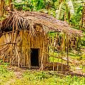 Jungle Hut In A Tropical Rainforest Print by Colin Utz