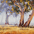 Kangaroo Grazing Print by Graham Gercken