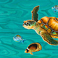 Kauila Sea Turtle Print by Emily Brantley