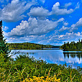Lake Abanakee - Indian Lake New York Print by David Patterson