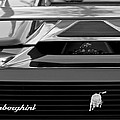 Lamborghini Rear View Emblem by Jill Reger