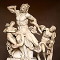 Laocoon and Sons Poster by Ellen Henneke