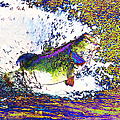 Largemouth Bass p68 Print by Wingsdomain Art and Photography