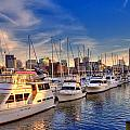 Late Afternoon at Constitution Marina - Charlestown Print by Joann Vitali