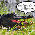 Later Alligator Greeting Card Print by Al Powell Photography USA