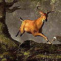 Leaping Stag Poster by Daniel Eskridge
